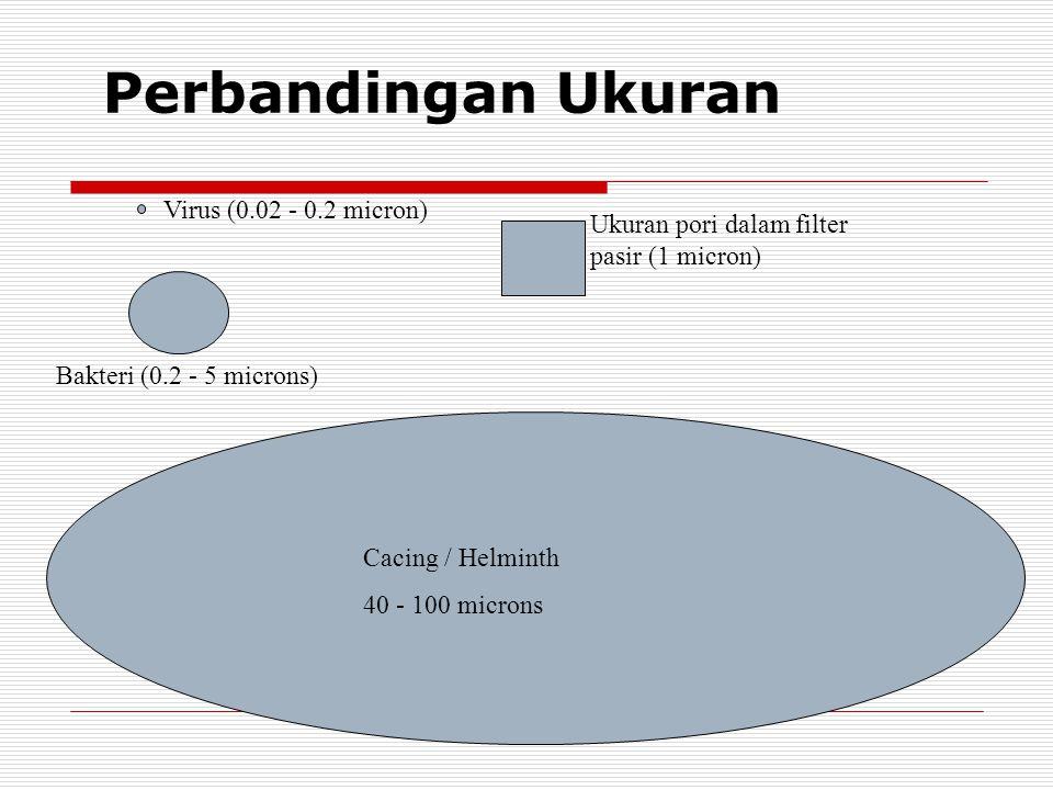 Perbandingan Ukuran Virus (0.02 - 0.2 micron)
