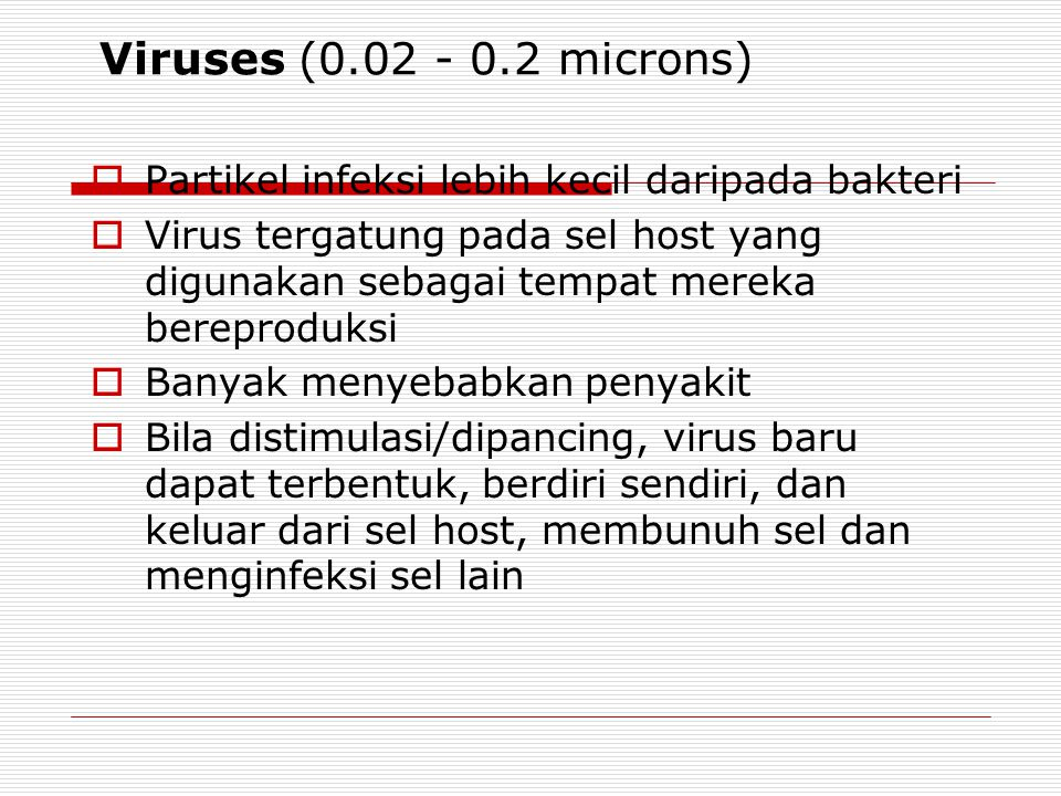Viruses (0.02 - 0.2 microns) Partikel infeksi lebih kecil daripada bakteri.