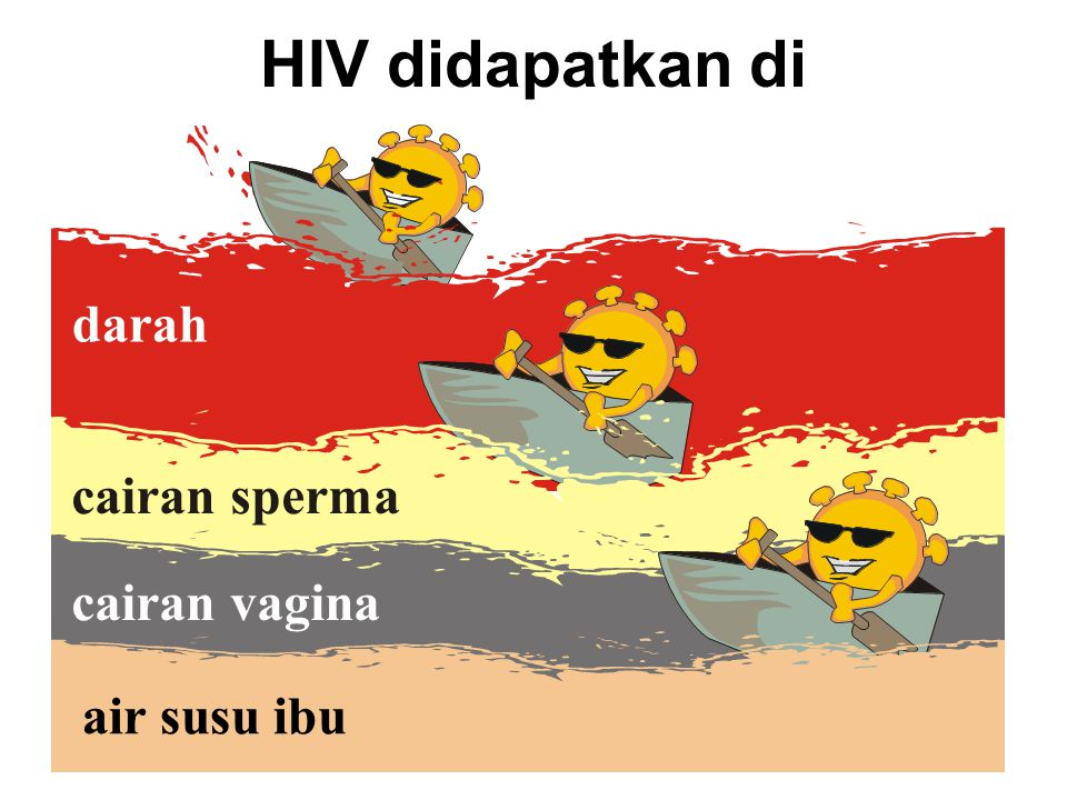 HIV didapatkan di darah cairan sperma cairan vagina air susu ibu