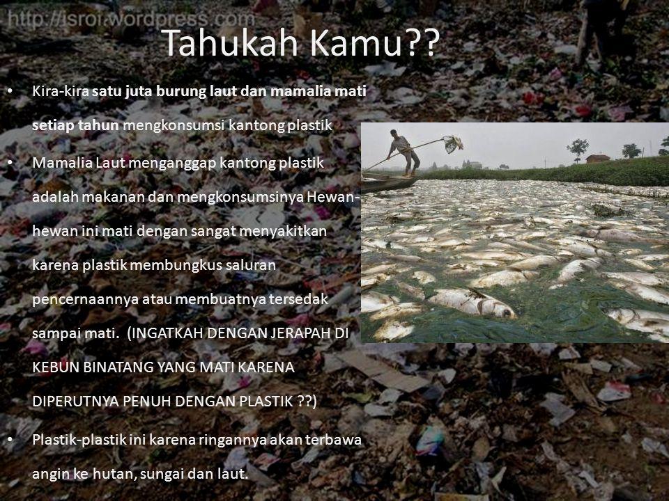 Tahukah Kamu Kira-kira satu juta burung laut dan mamalia mati setiap tahun mengkonsumsi kantong plastik.