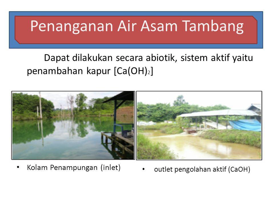 Penanganan Air Asam Tambang