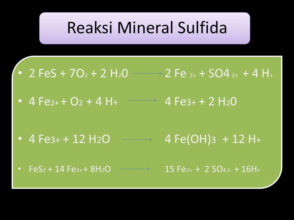 Reaksi Mineral Sulfida
