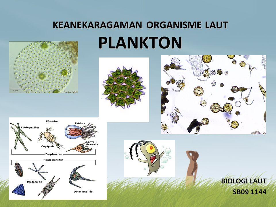KEANEKARAGAMAN ORGANISME LAUT PLANKTON