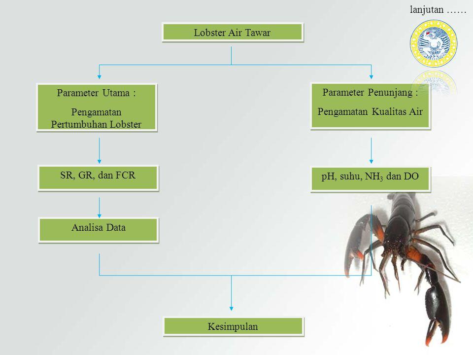 Pengamatan Pertumbuhan Lobster Parameter Penunjang :