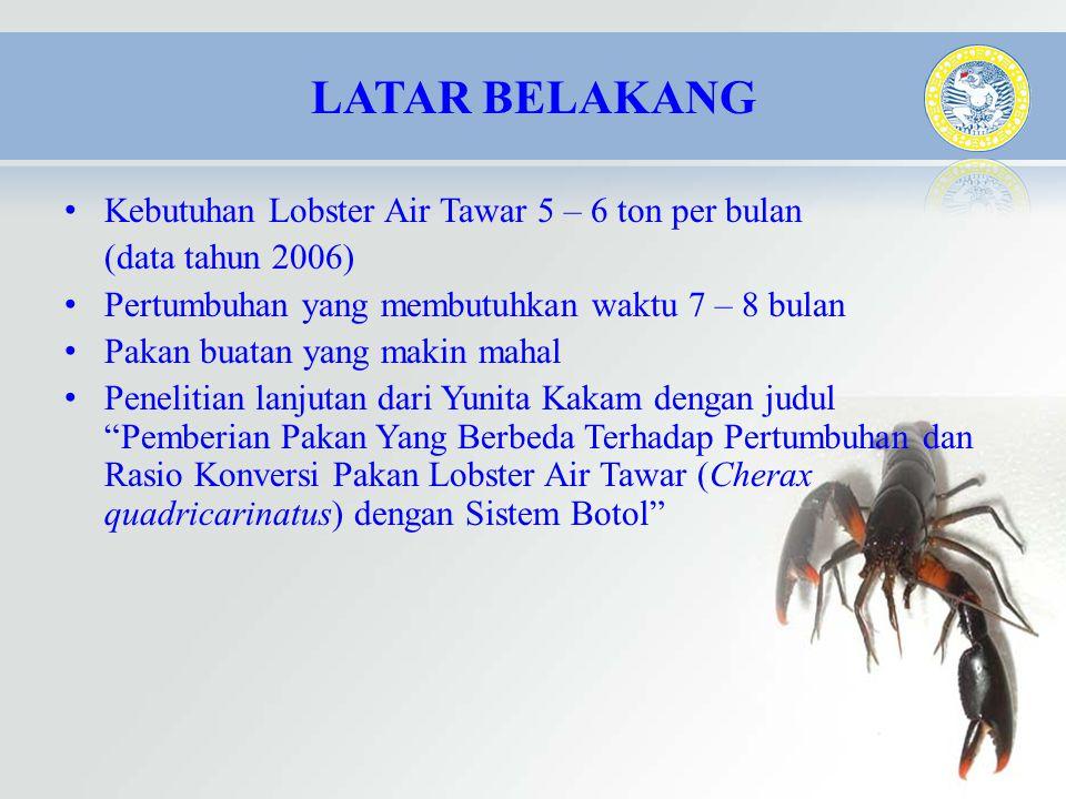 LATAR BELAKANG Kebutuhan Lobster Air Tawar 5 – 6 ton per bulan