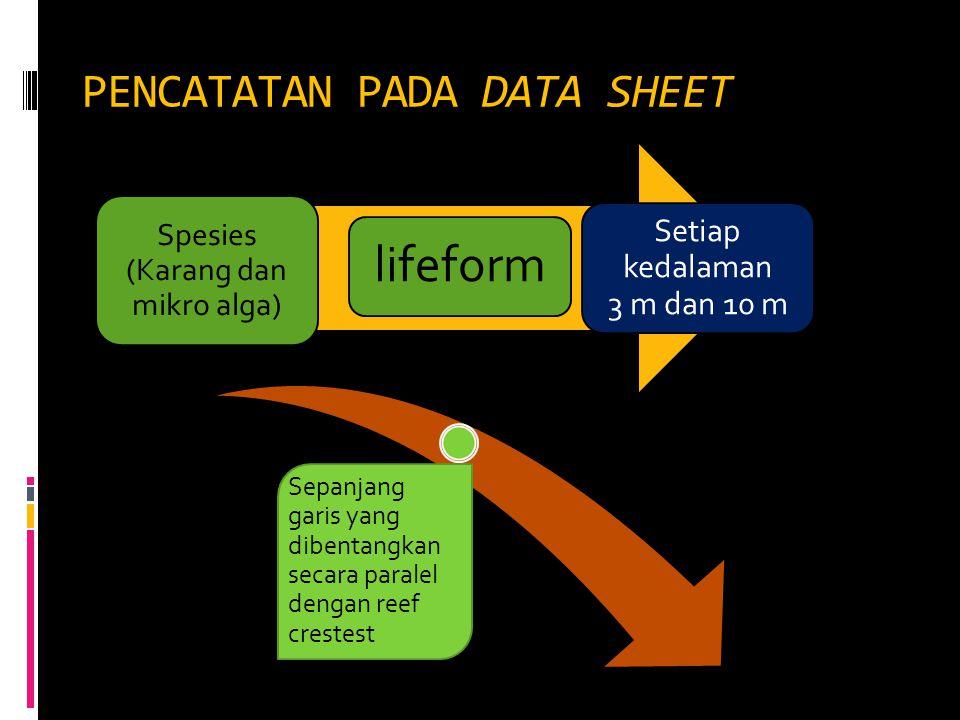 PENCATATAN PADA DATA SHEET
