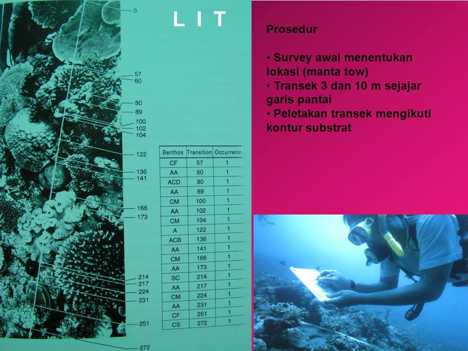 L I T Prosedur Survey awal menentukan lokasi (manta tow)