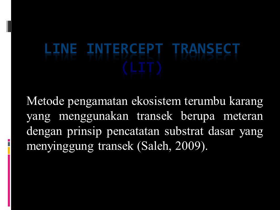 Line intercept transect (lit)