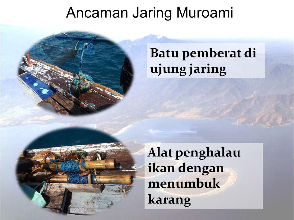 Ancaman Jaring Muroami
