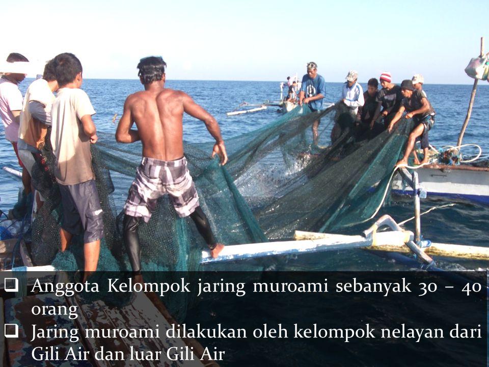 Anggota Kelompok jaring muroami sebanyak 30 – 40 orang