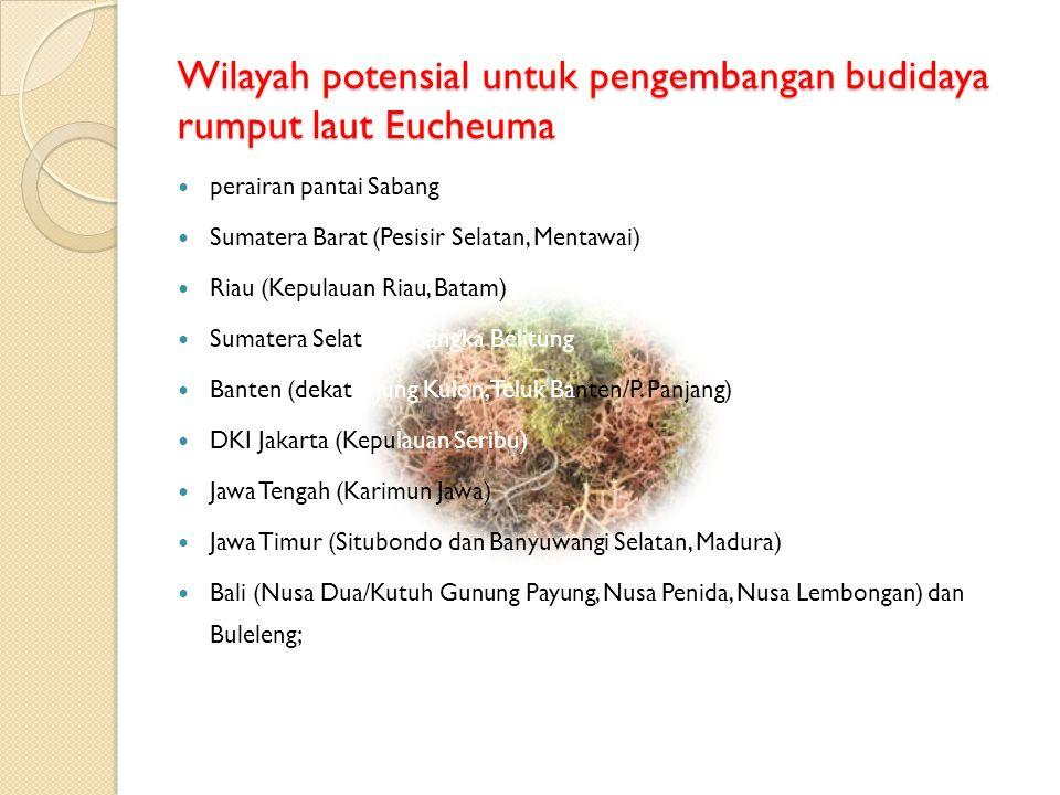 Wilayah potensial untuk pengembangan budidaya rumput laut Eucheuma