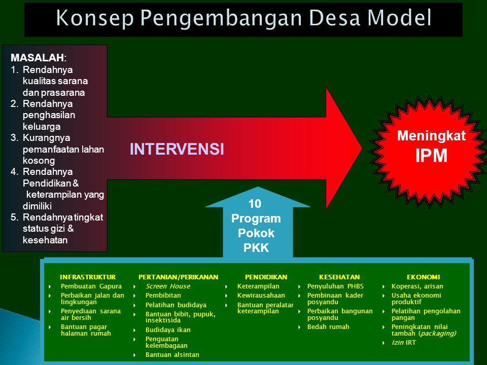 Konsep Pengembangan Desa Model