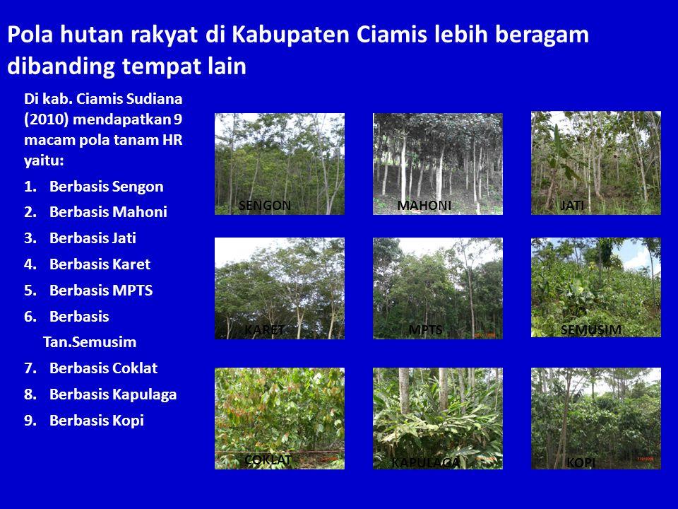 Pola hutan rakyat di Kabupaten Ciamis lebih beragam dibanding tempat lain