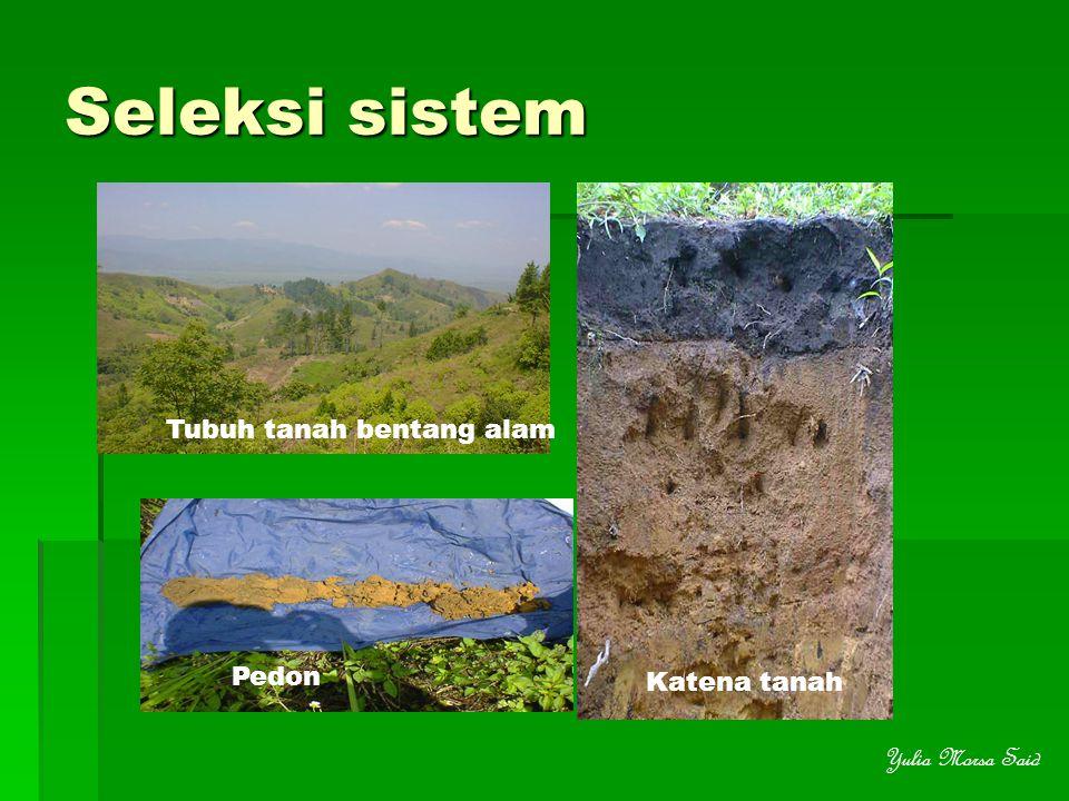 Seleksi sistem Tubuh tanah bentang alam Pedon Katena tanah