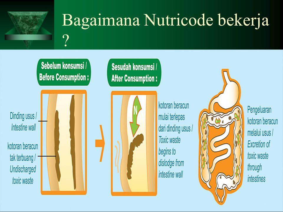 Bagaimana Nutricode bekerja