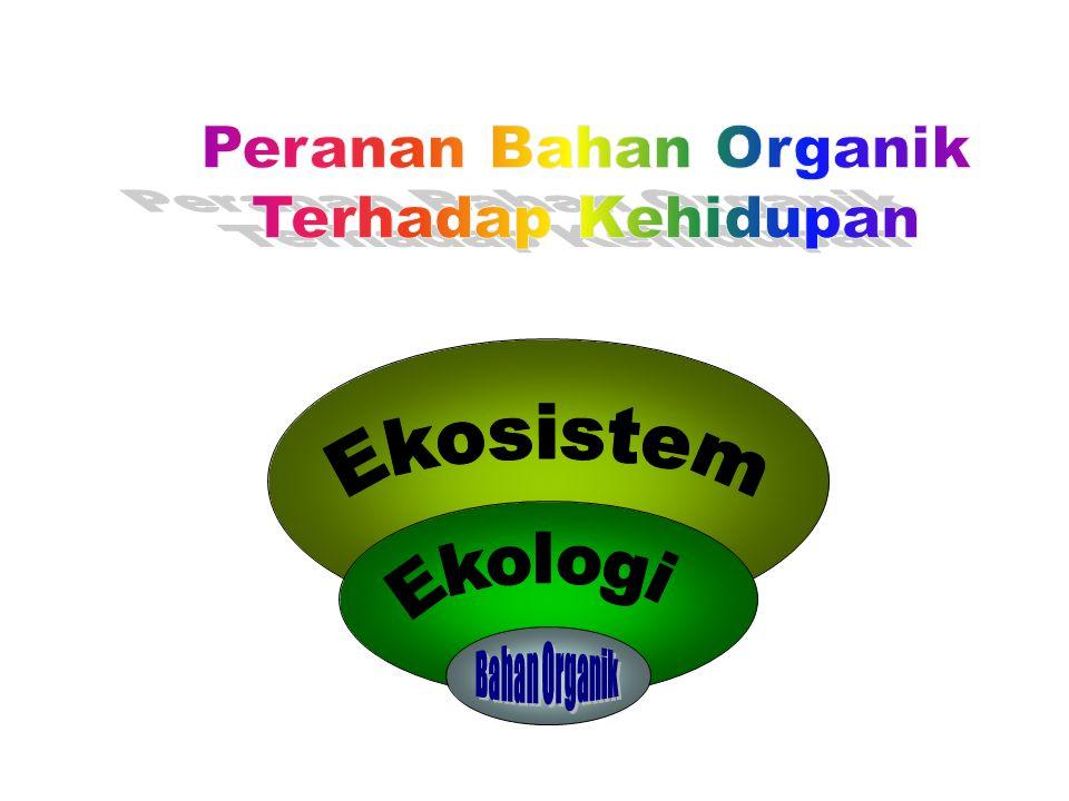 Ekosistem Bahan Organik Peranan Bahan Organik Terhadap Kehidupan