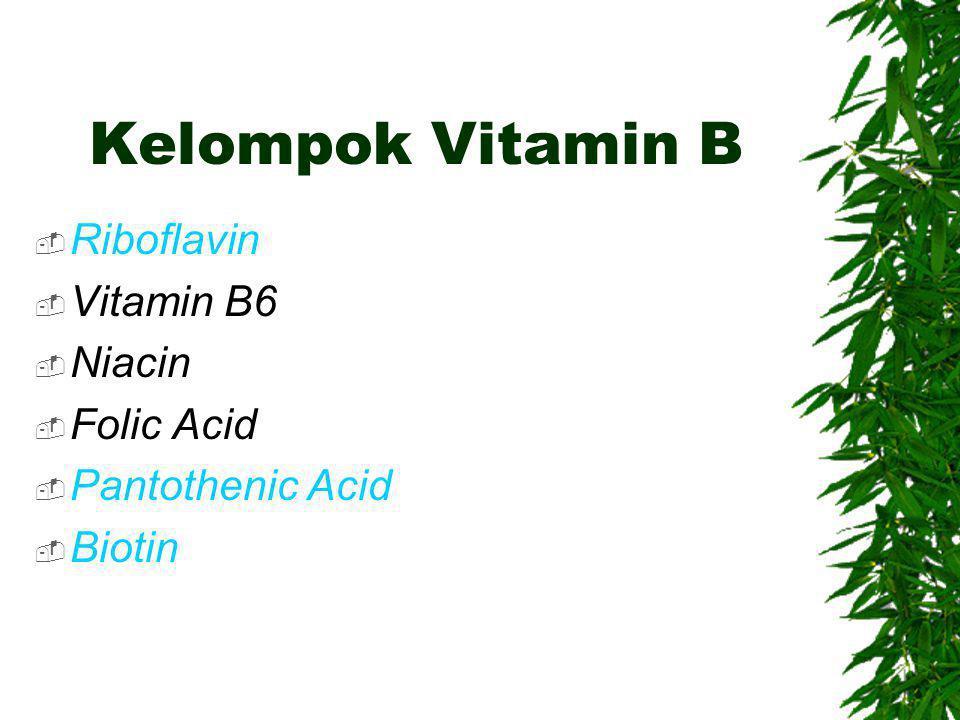 Kelompok Vitamin B Riboflavin Vitamin B6 Niacin Folic Acid