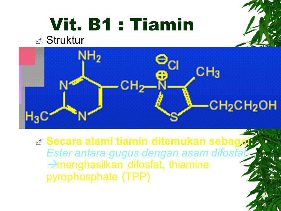 Vit. B1 : Tiamin Struktur.