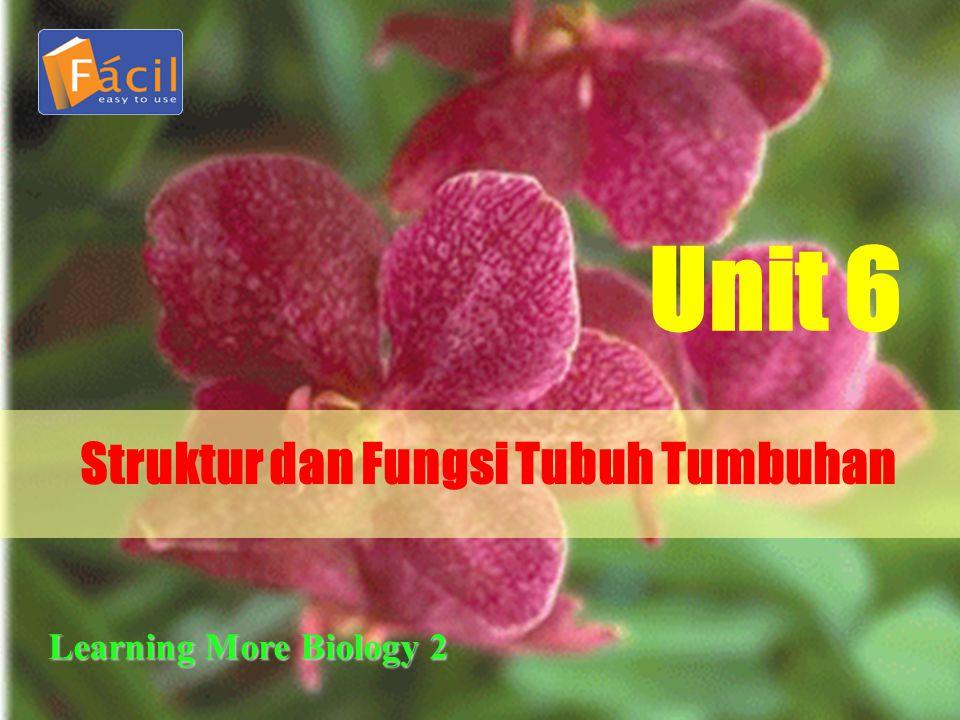Struktur dan Fungsi Tubuh Tumbuhan