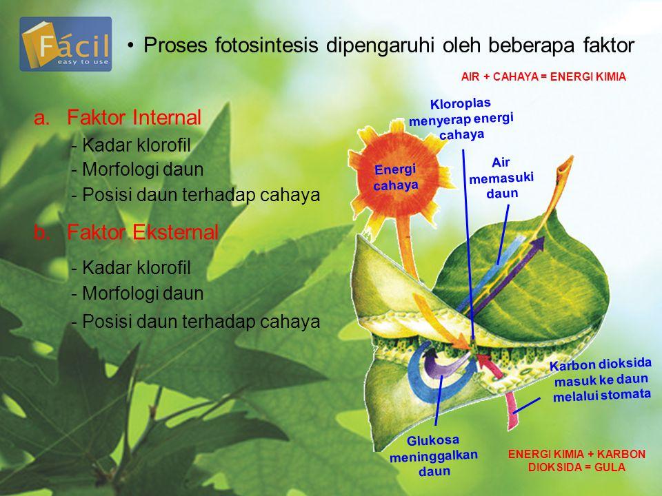 Proses fotosintesis dipengaruhi oleh beberapa faktor