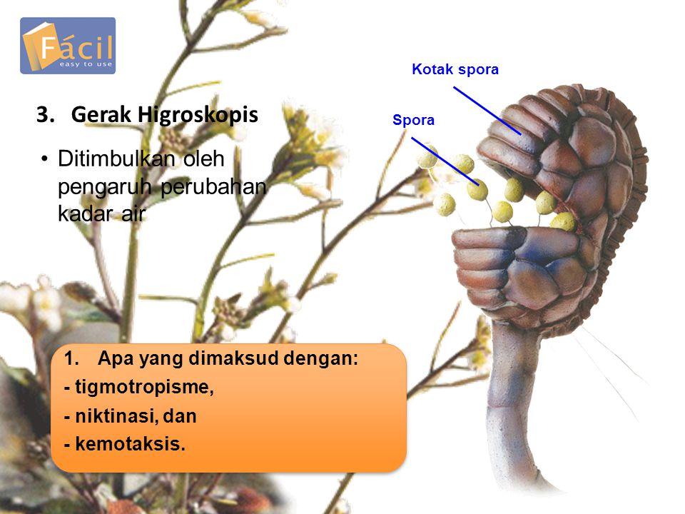 3. Gerak Higroskopis Ditimbulkan oleh pengaruh perubahan kadar air