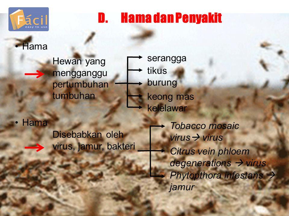 D. Hama dan Penyakit Hama serangga