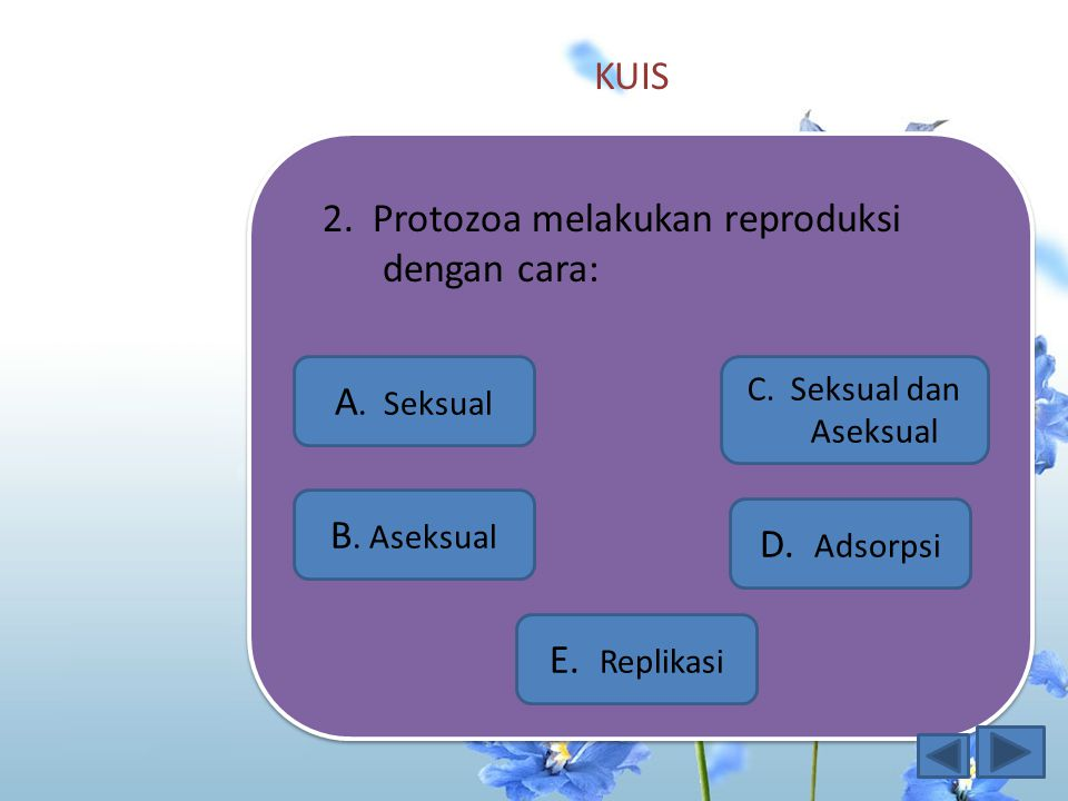 2. Protozoa melakukan reproduksi dengan cara:
