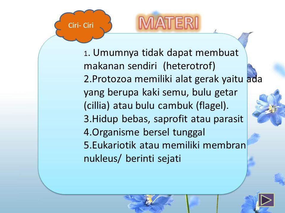 Ciri- Ciri MATERI. 1. Umumnya tidak dapat membuat makanan sendiri (heterotrof)