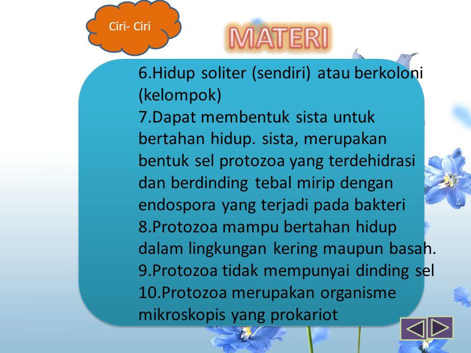 MATERI 6.Hidup soliter (sendiri) atau berkoloni (kelompok)