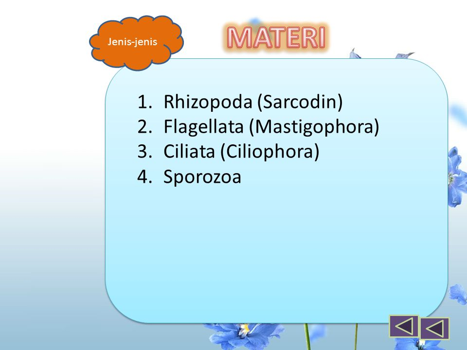 MATERI Rhizopoda (Sarcodin) Flagellata (Mastigophora)