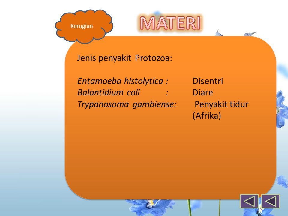 MATERI Jenis penyakit Protozoa: