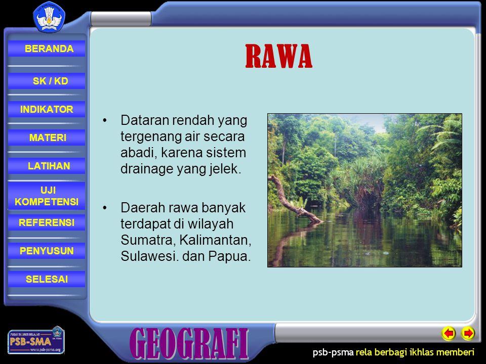 RAWA Dataran rendah yang tergenang air secara abadi, karena sistem drainage yang jelek.