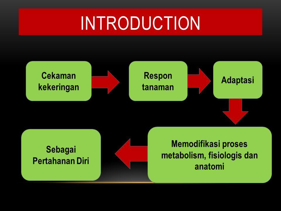 introduction Cekaman kekeringan Respon tanaman Adaptasi
