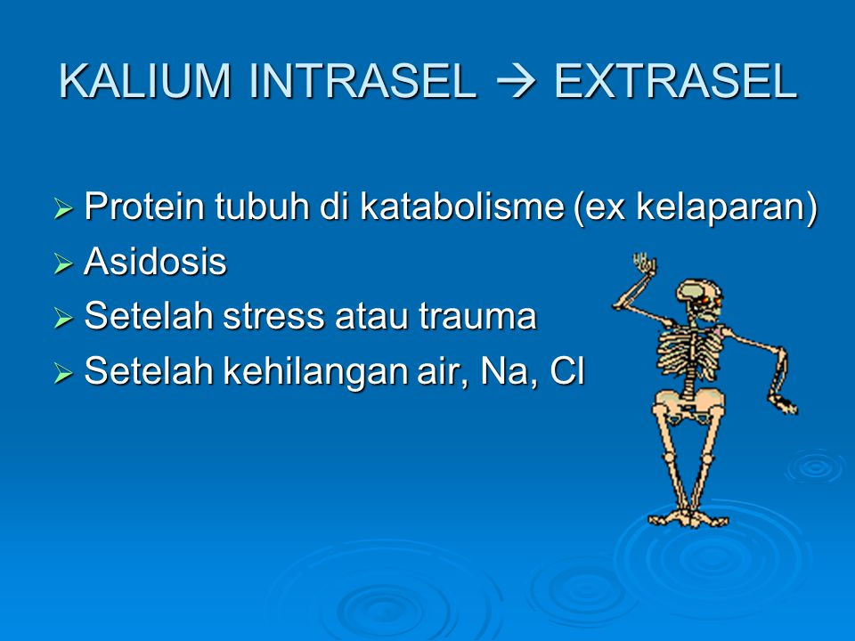 KALIUM INTRASEL  EXTRASEL