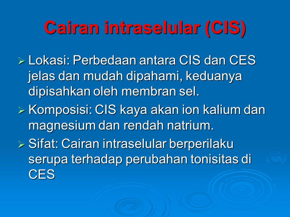 Cairan intraselular (CIS)