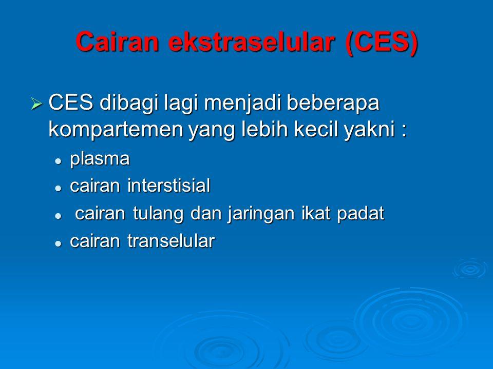 Cairan ekstraselular (CES)