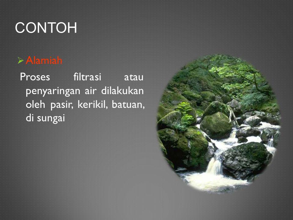 Contoh Alamiah.