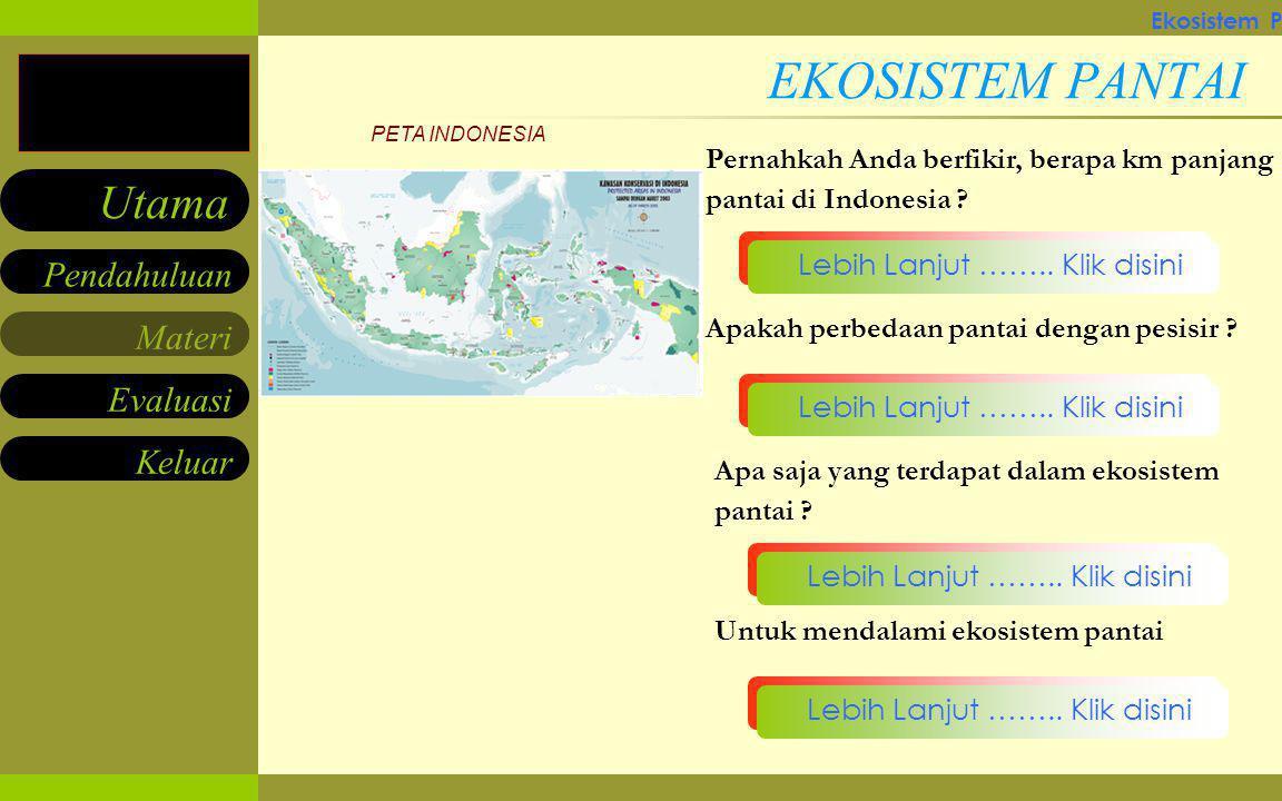 Ekosistem Pantai & Manfaatnya bagi Manusia