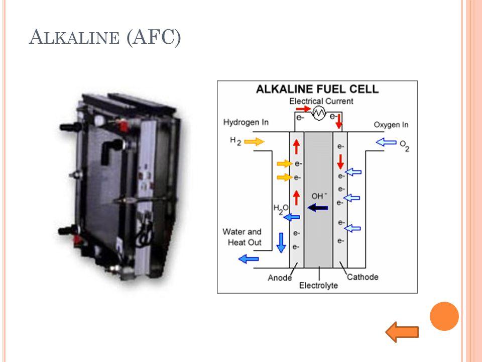 Alkaline (AFC)