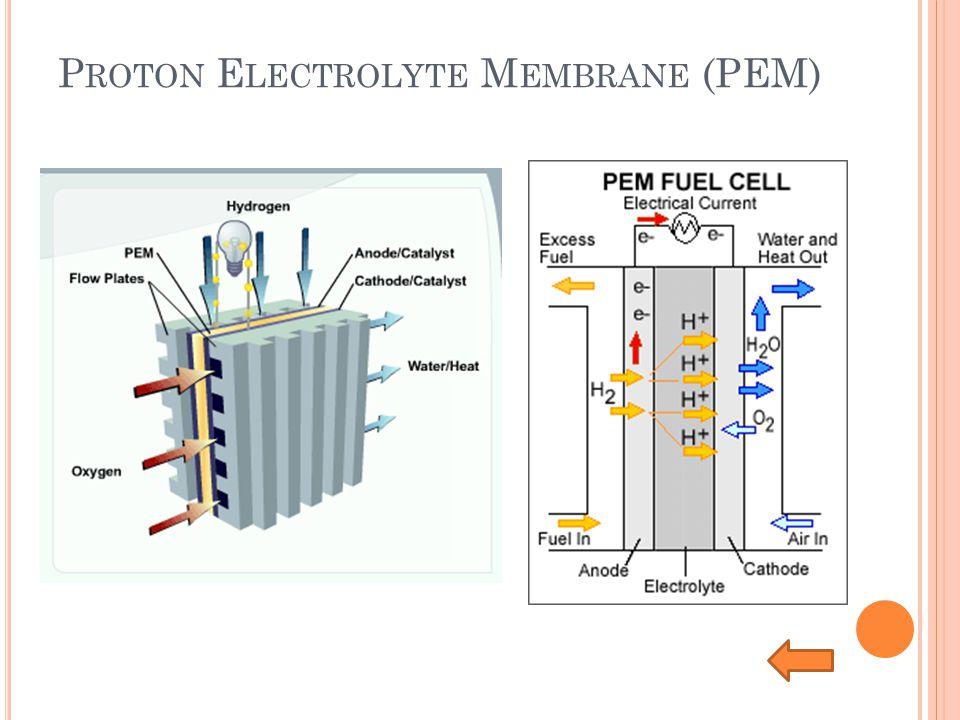 Proton Electrolyte Membrane (PEM)