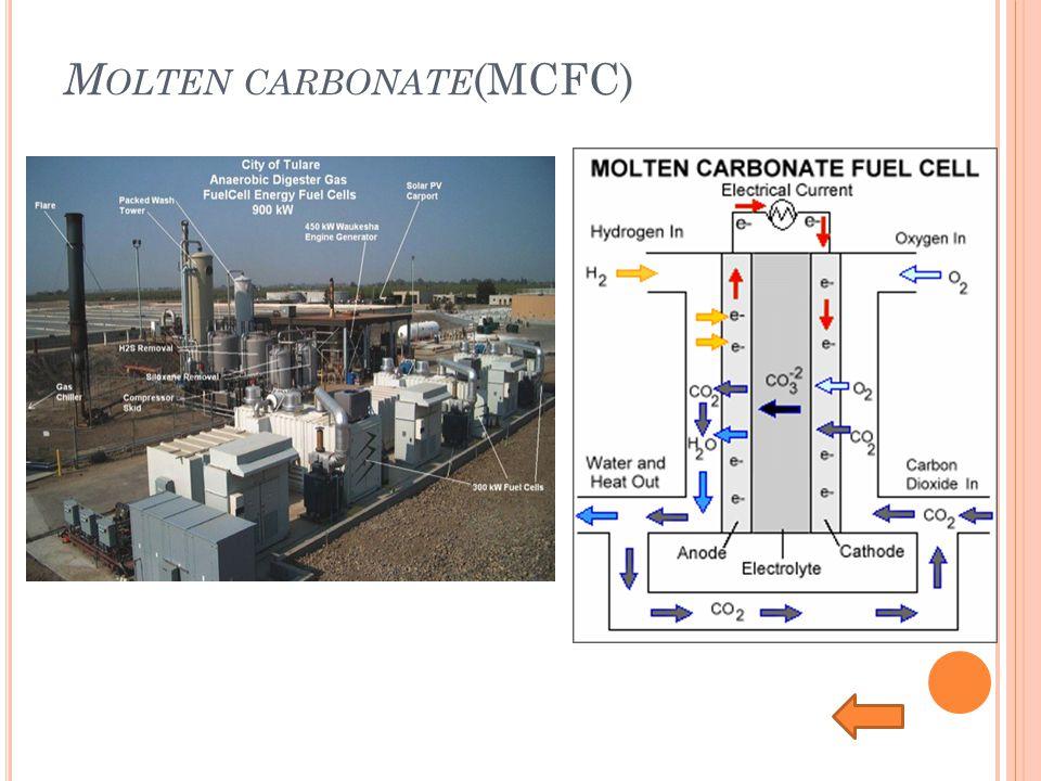Molten carbonate(MCFC)