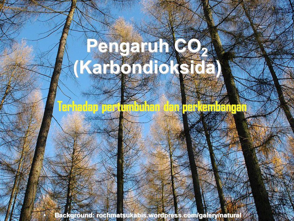 Pengaruh CO2 (Karbondioksida)