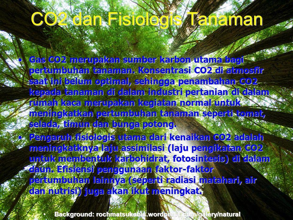 CO2 dan Fisiologis Tanaman