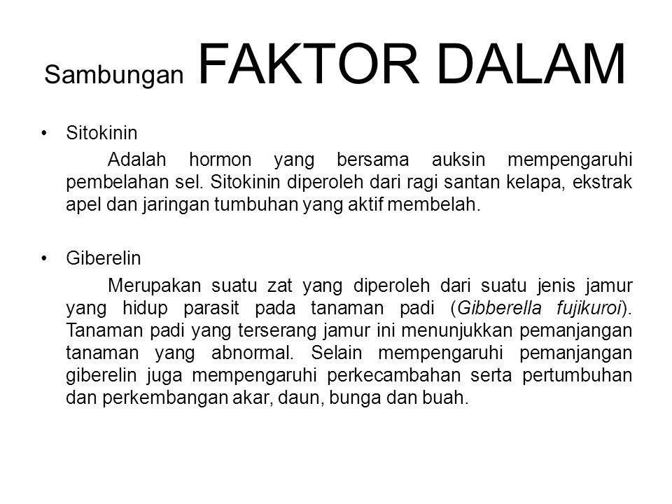 Sambungan FAKTOR DALAM