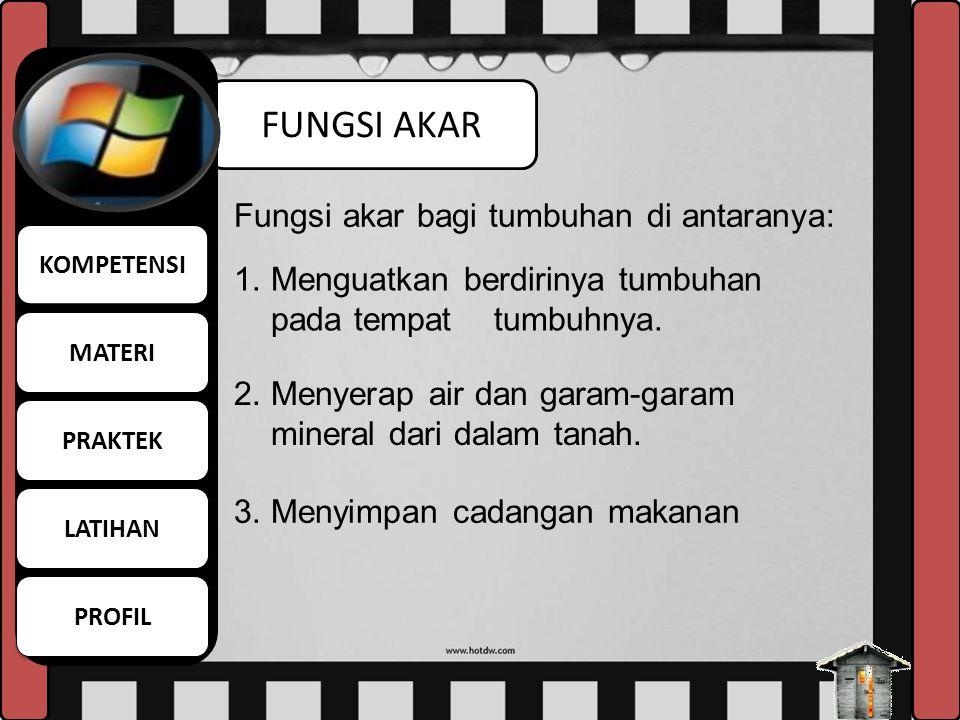 FUNGSI AKAR Fungsi akar bagi tumbuhan di antaranya: