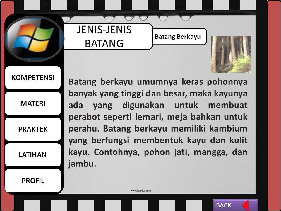 MATERI KOMPETENSI. LATIHAN. PROFIL. PRAKTEK. JENIS-JENIS BATANG. Batang Berkayu.
