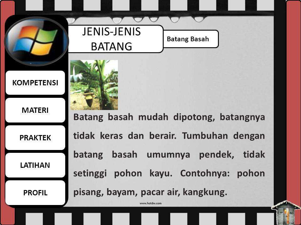 MATERI KOMPETENSI. LATIHAN. PROFIL. PRAKTEK. JENIS-JENIS BATANG. Batang Basah.