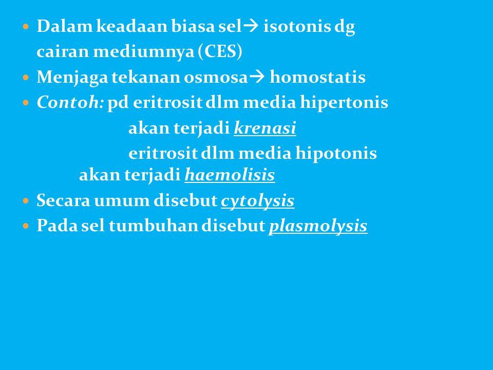 Dalam keadaan biasa sel isotonis dg