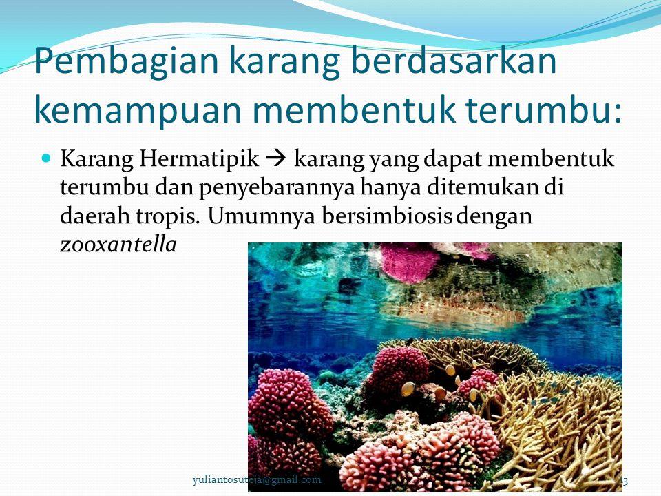 Pembagian karang berdasarkan kemampuan membentuk terumbu: