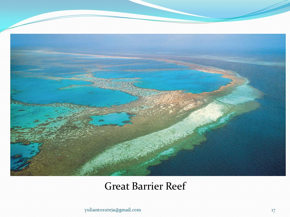 Great Barrier Reef yuliantosuteja@gmail.com